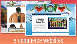 e-commerce-websites-in-anchorage-alaska