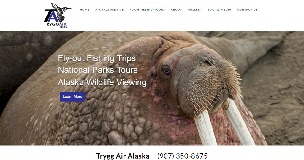 Trygg Air, an Alaska Air Taxi providing custom wildlife flightseeing, backcountry skiing, national park flights and more