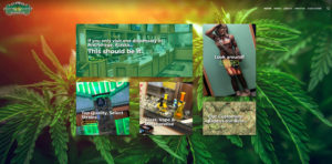 Alaska's Green Light District - #1 Best Dispensary in Anchorage, Alaska Website Design